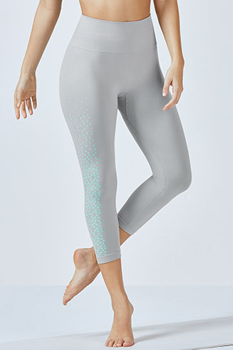 Renee Seamless Capri Tight
